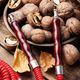 Hookah with autumn walnut - PhotoDune Item for Sale