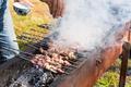 lamb kebabs on skewers, sprinkle salt - PhotoDune Item for Sale