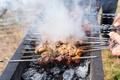 lamb kebabs,shish kebab on skewers,roast mutton cubes on a skewer - PhotoDune Item for Sale