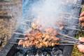 lamb kebabs on skewers - PhotoDune Item for Sale