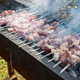 roast lamb kebabs, charcoal fire had just been ignited - PhotoDune Item for Sale