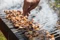 shish kebab on skewers - PhotoDune Item for Sale
