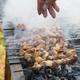 xinjiang roast lamb kebabs, sprinkle salt,  outdoor barbecue - PhotoDune Item for Sale