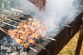 xinjiang roast lamb kebabs, sprinkle paprika powder - PhotoDune Item for Sale