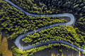Aerial drone view of winding road through green forest - PhotoDune Item for Sale