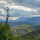 Landscape with dried tree against hills and cloudy sky with sun rays - PhotoDune Item for Sale