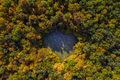 Aerial view of heart shaped forest lawn at autumn from a drone - PhotoDune Item for Sale