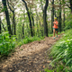 Trail running woman in green forest. Endurance sport. - PhotoDune Item for Sale