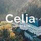 Celia Premium Keynote Template - GraphicRiver Item for Sale