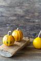 Ornamental pumpkins - PhotoDune Item for Sale