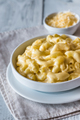 Portion of macaroni and cheese - PhotoDune Item for Sale