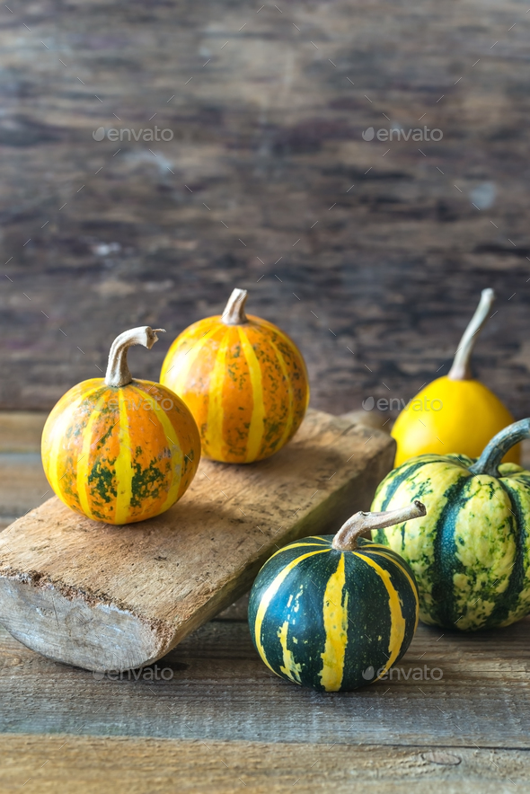 Variety of ornamental pumpkins - Stock Photo - Images