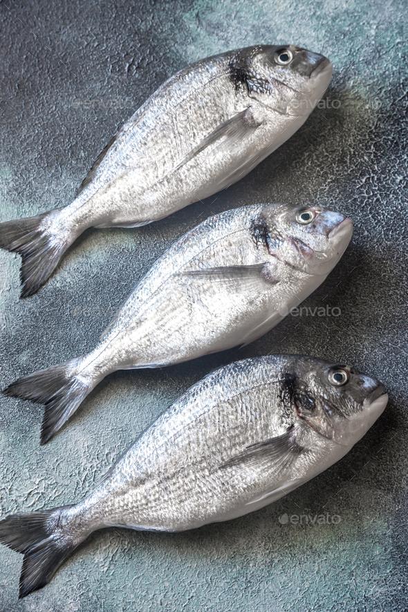 Sea bream (dorada) fish - Stock Photo - Images