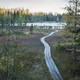 Wooden walkway leads to small trout lake in northern Minnesota at dusk - PhotoDune Item for Sale