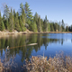 Small lake in northern Minnesota with beautiful blue water - PhotoDune Item for Sale