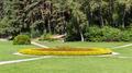 flowerbed in Kislovodsk National Park - PhotoDune Item for Sale