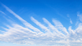 panoramic view of blue sky with palm shaped clouds - PhotoDune Item for Sale