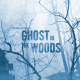 Ghost in the Woods - Horror Trailer - VideoHive Item for Sale
