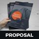 Project Business Proposal Design v3 - GraphicRiver Item for Sale