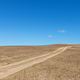 path of wilderness against a blue sky, charming scenery - PhotoDune Item for Sale