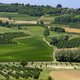 Vineyards near Govone, Asti, in Monferrato - PhotoDune Item for Sale