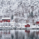 Rd rorbu houses in Norway in winter - PhotoDune Item for Sale