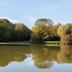 City park in Munich, Germany. Grass field, trees and reflections in a pond - PhotoDune Item for Sale