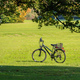 City park in Munich, Germany. View of a bike in a green field in the afternoon - PhotoDune Item for Sale