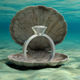 Wedding ring in an oyster shell underwater, on the seabed. 3d illustration - PhotoDune Item for Sale