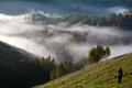 Summer morning mist - PhotoDune Item for Sale