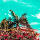 Palms tropical vibes. Canary Islands. Fashion travel mood - PhotoDune Item for Sale