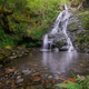 A waterfall emerges among dense deciduous forests - PhotoDune Item for Sale