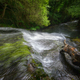 Green spring tones in a waterfall - PhotoDune Item for Sale