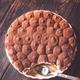 Tiramisu in baking dish - PhotoDune Item for Sale