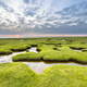 Erosion holes in grassland of Tidal marsh of Dollard - PhotoDune Item for Sale