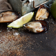 Fresh uncooked  mussels - PhotoDune Item for Sale