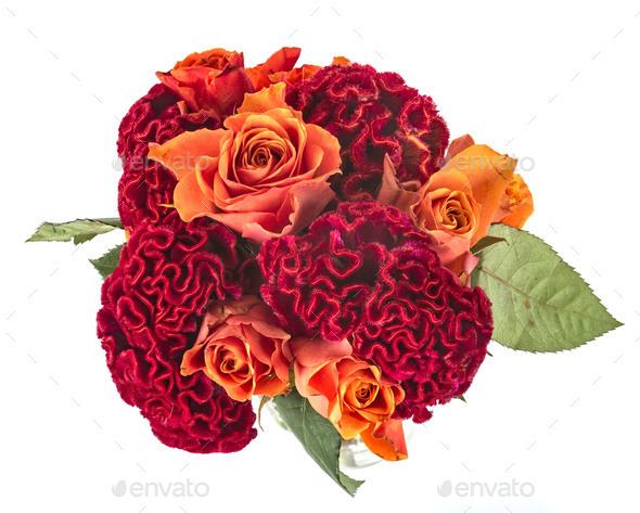 bouquet in studio - Stock Photo - Images