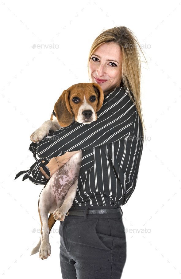 puppy beagle and woman - Stock Photo - Images