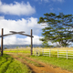 Kauai Farm Landscape, Hawaii - PhotoDune Item for Sale