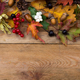 Thanksgiving background with fall leaves and berry, copy space - PhotoDune Item for Sale