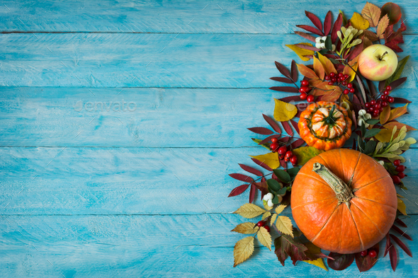 Fall border of apples, berries, pumpkins on blue table, copy spa - Stock Photo - Images