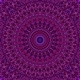 12 Purple Floral Mandala Seamless Patterns - GraphicRiver Item for Sale