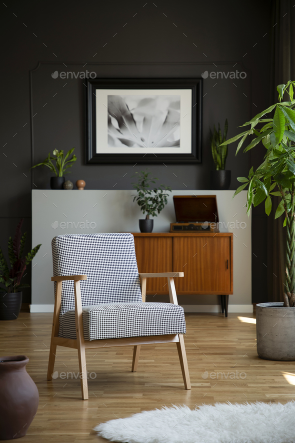 Retro armchair and tree in a living room interior with a cabinet - Stock Photo - Images