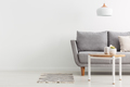 Copy space on the photo of bright stylish living room with grey - PhotoDune Item for Sale