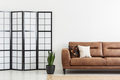 Screen and plant next to leather sofa with cushions in white apa - PhotoDune Item for Sale