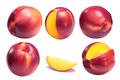Nectarine smooth-skinned peach P. persica - PhotoDune Item for Sale