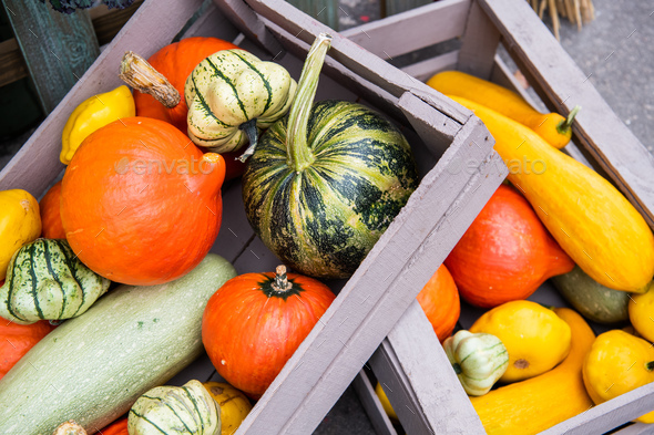 The multi-colored pumpkins lying on straw with a wooden box in a background. Autumn time - Stock Photo - Images