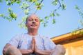 Peaceful senior man meditating seated ooutdoor under the tree. Concept of mental health - PhotoDune Item for Sale