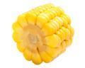 Piece of corn cob, paths - PhotoDune Item for Sale