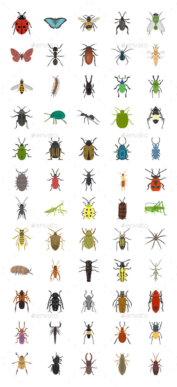 60 Insects Vector Icons - Icons